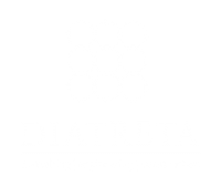 diatreta logo logotip footer