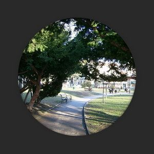 diatreta lokacija čuburski park
